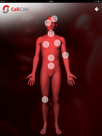 Interactive Body - Reggie App